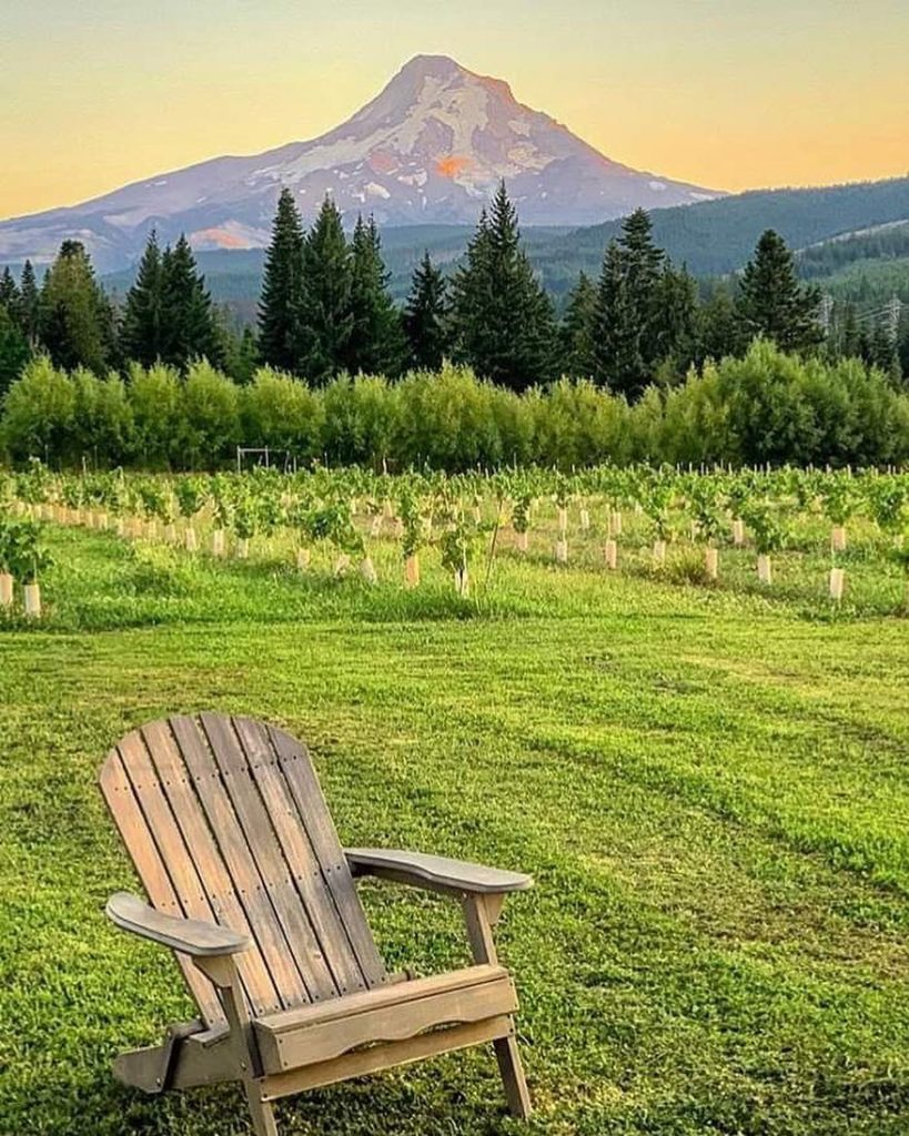 View of Mt Hood from Parkdale